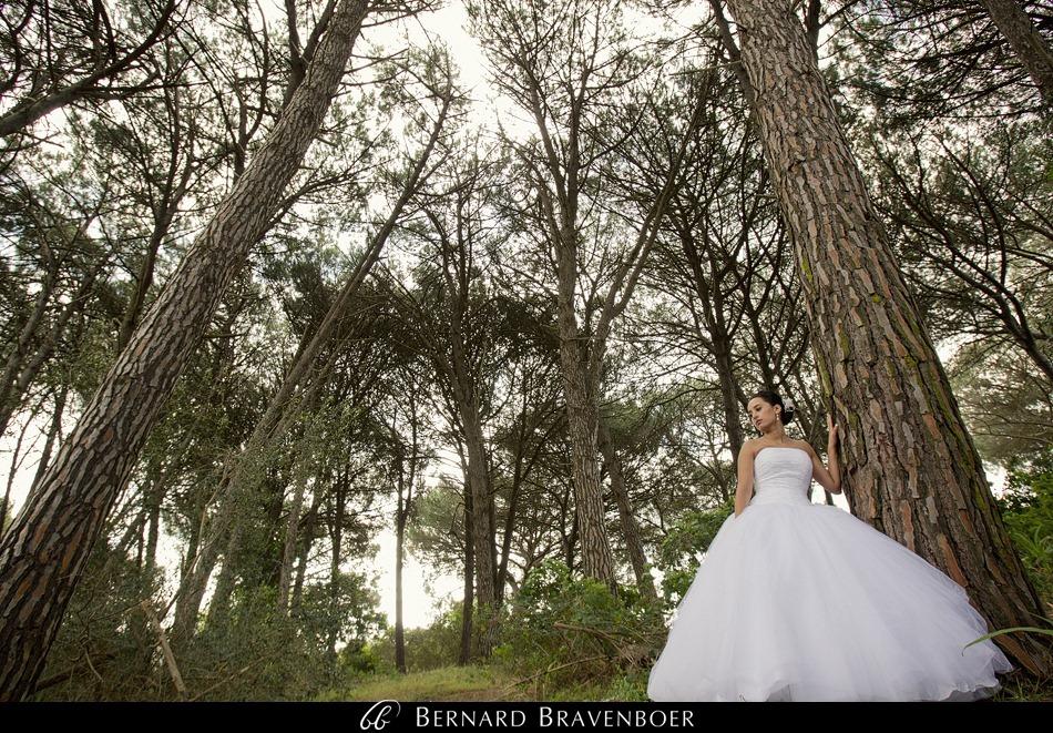 Bravenboer Wedding Bianca Royston Zevenwacht 4201
